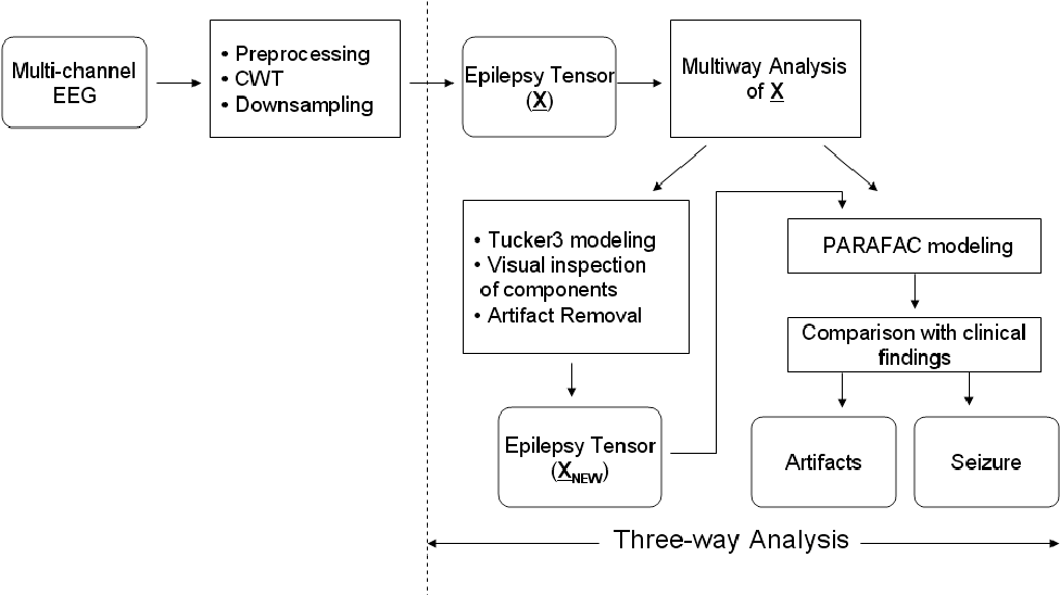 Figure 6 from Multiway analysis of epilepsy tensors