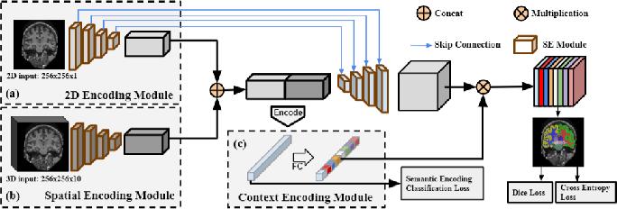 Figure 1 for Context-endcoding for neural network based skull stripping in magnetic resonance imaging