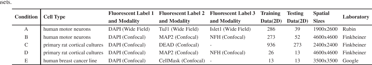 Figure 2 for Global Transformer U-Nets for Label-Free Prediction of Fluorescence Images