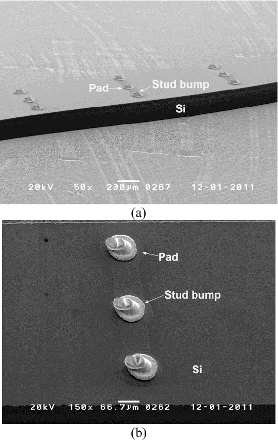 Figure 6 SEM micrograph of perpendicular circuit die (a) chip (b) stud bump