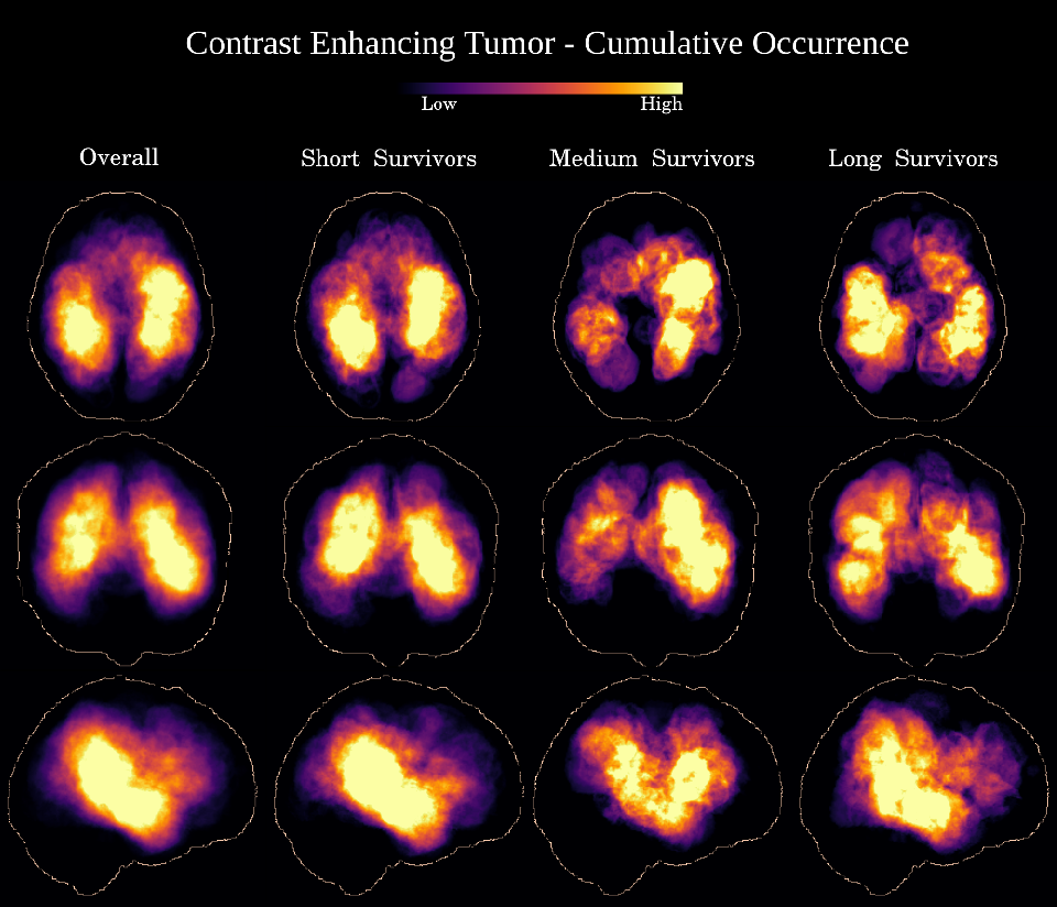 Figure 4 for Deep Learning versus Classical Regression for Brain Tumor Patient Survival Prediction