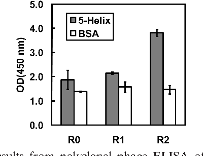 FIGURE 2: Results from polyclonal phage ELISA of populations from unselected library (R0), and output phage from rounds 1 and 2 of the selection against 5-Helix (R1 andR2, respectively). A specific binding signal was observed in the R2 population. Phage titers for all three populations were ∼2 1010 infectious units/mL.
