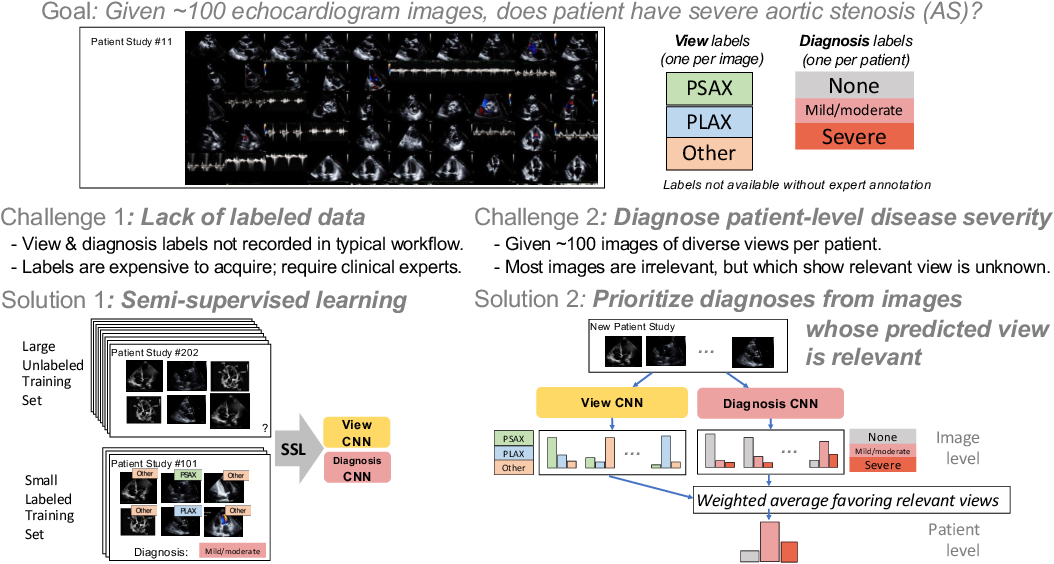 Figure 1 for A New Semi-supervised Learning Benchmark for Classifying View and Diagnosing Aortic Stenosis from Echocardiograms
