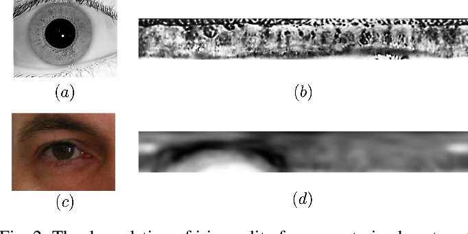 Figure 3 for Morton Filters for Superior Template Protection for Iris Recognition