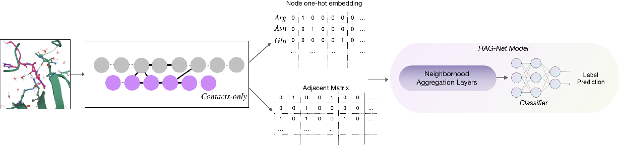 Figure 1 for Sequence-based deep learning antibody design for in silico antibody affinity maturation