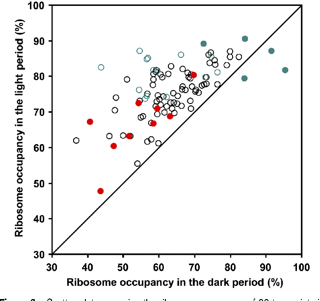 Ribosome and transcript copy numbers polysome occupancy and enzyme figure 3 altavistaventures Images