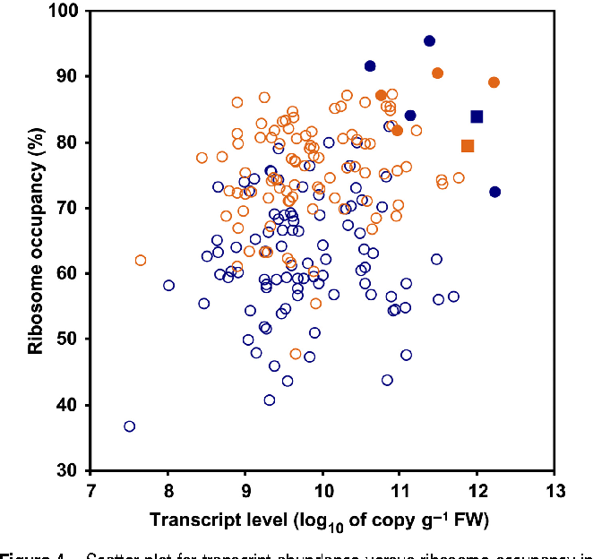 Ribosome and transcript copy numbers polysome occupancy and enzyme figure 4 altavistaventures Images