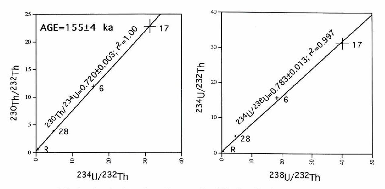 Feb 2002. disequilibrium dating uranium thorium peat Middle Pleistocene.