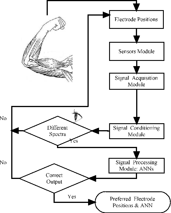 figure 1 from emg pattern recognition system based on neural rh semanticscholar org Jackson Wiring Diagrams NCV Diagram