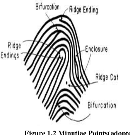 Person Identification Using Multiple Fingerprint Matching
