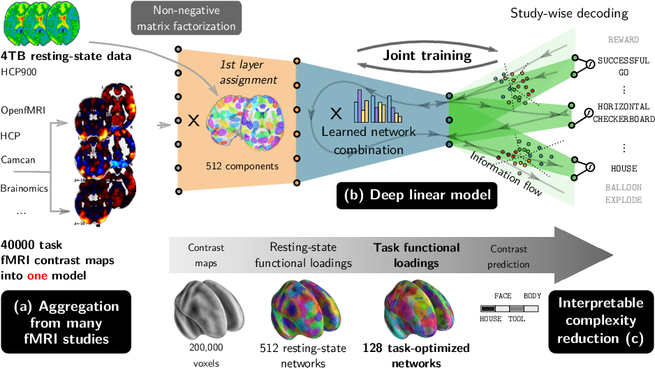 Figure 1 for Extracting Universal Representations of Cognition across Brain-Imaging Studies