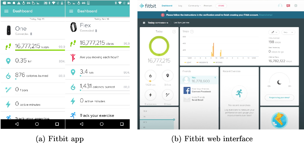 Breaking Fitness Records without Moving: Reverse Engineering and