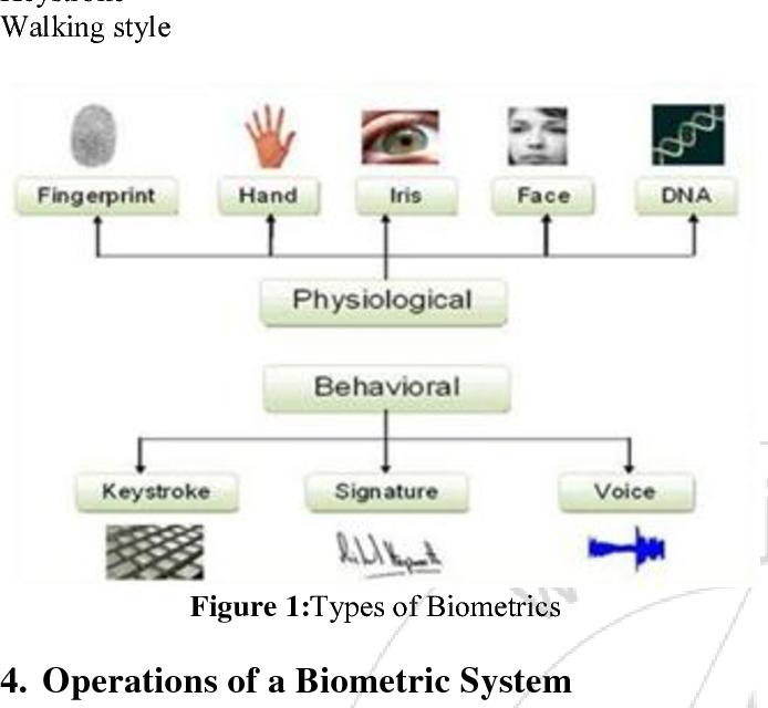 Design Of Biometric Authentication System Using Three Basic Human