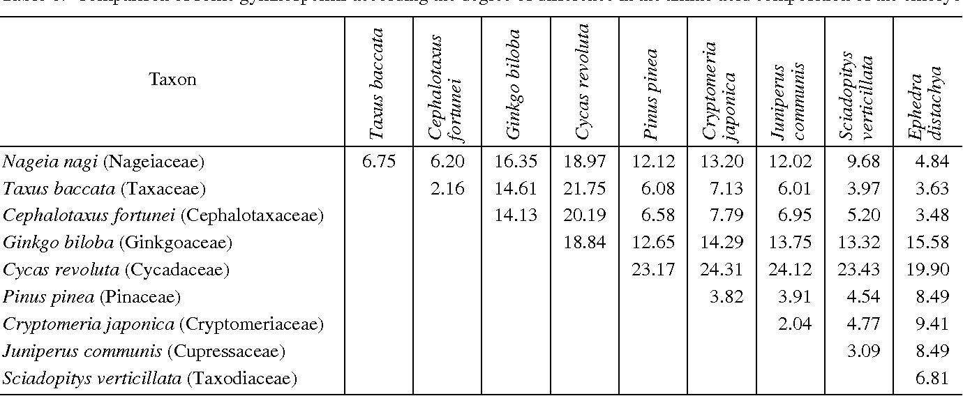 Table 6 From Systematic Relationships Of Podocarpales