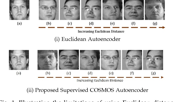 Figure 2 for Supervised COSMOS Autoencoder: Learning Beyond the Euclidean Loss!