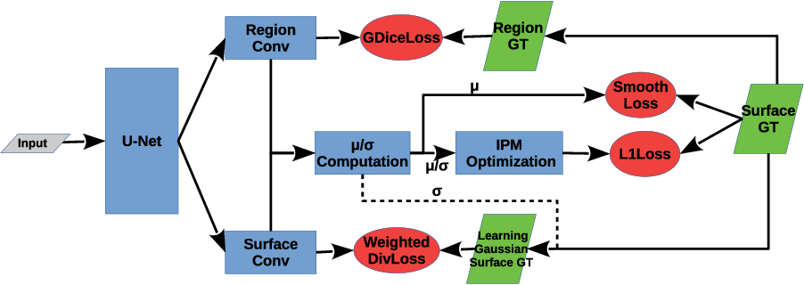 Figure 1 for Globally Optimal Segmentation of Mutually Interacting Surfaces using Deep Learning