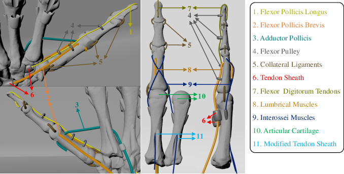 Figure 4 for Towards Complex and Continuous Manipulation: A Gesture Based Anthropomorphic Robotic Hand Design
