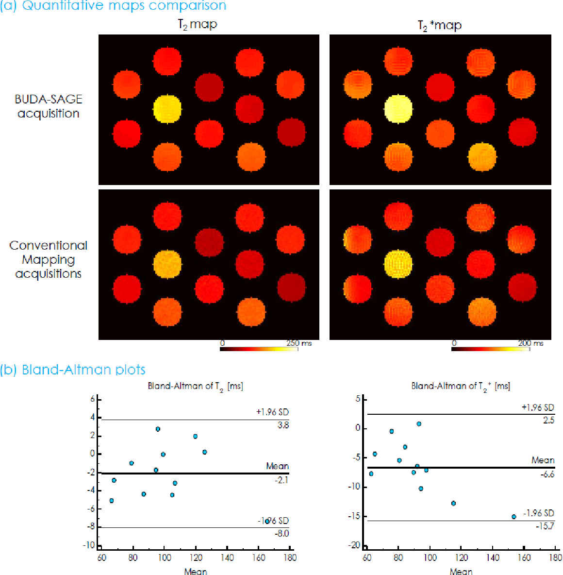 Figure 4 for BUDA-SAGE with self-supervised denoising enables fast, distortion-free, high-resolution T2, T2*, para- and dia-magnetic susceptibility mapping