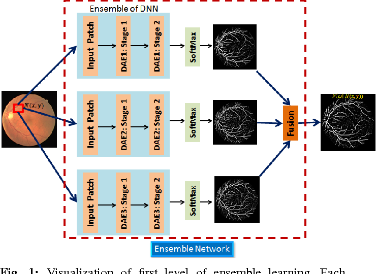 Figure 1 for Deep Neural Ensemble for Retinal Vessel Segmentation in Fundus Images towards Achieving Label-free Angiography