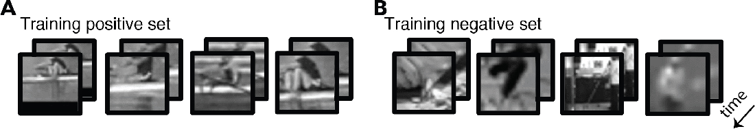 Figure 2 for What can human minimal videos tell us about dynamic recognition models?