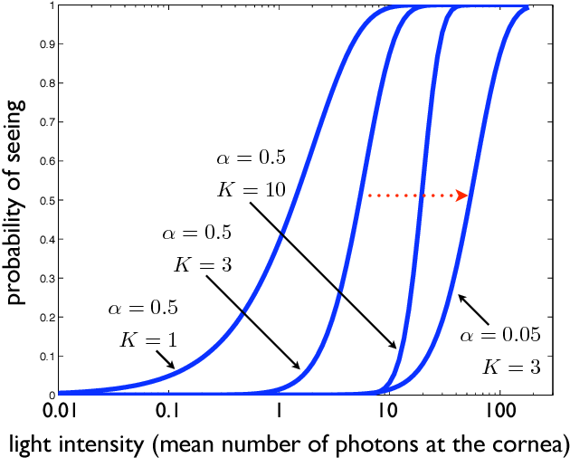 PDF] I  Photon Counting in Vision - Semantic Scholar