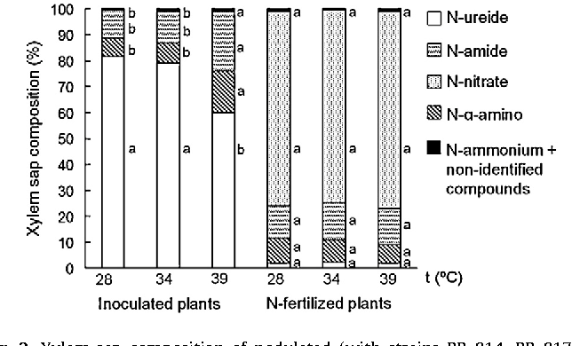 Fig. 3. Xylem-sap composition of nodulated (with strains BR 814, BR 817, BR 6010, CFN 299, CNPAF 126 and CIAT 899) or N-fertilized (75 mg of N as KNO3 per week) common bean grown at 28, 34 and 39 ◦C. Evaluation performed at 38 days after emergence. Data represent the means of 24 (nodulated; n = 24) and four (Nfertilized; n = 4) replicates, and when followed by the same letter, within each group