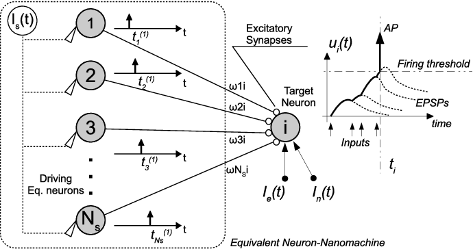 Nanomachine to neuron communication interfaces for neuronal figure 3 ccuart Choice Image