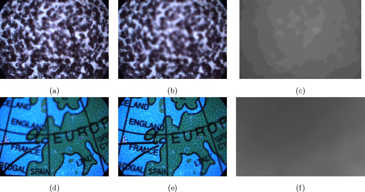 Figure 2 for Shape Estimation from Defocus Cue for Microscopy Images via Belief Propagation