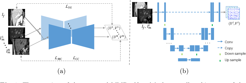 Figure 1 for Unsupervised MMRegNet based on Spatially Encoded Gradient Information