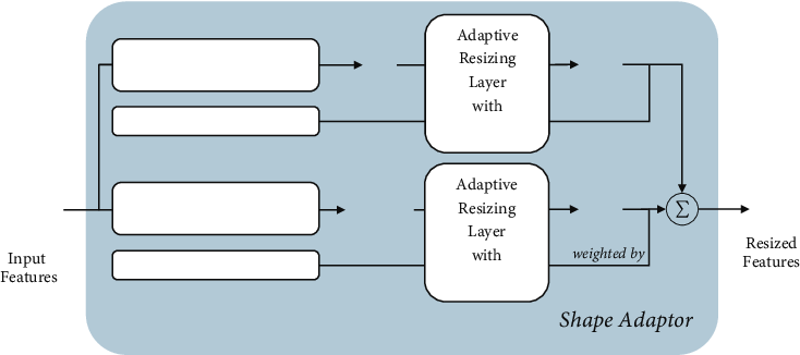 Figure 1 for Shape Adaptor: A Learnable Resizing Module