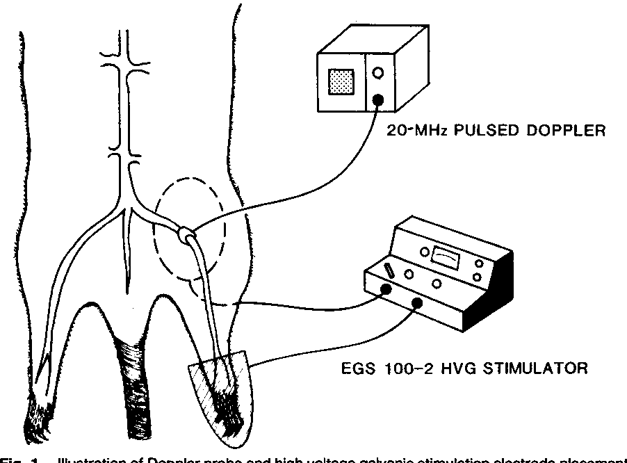 Jacobs Electronics Wiring Diagram