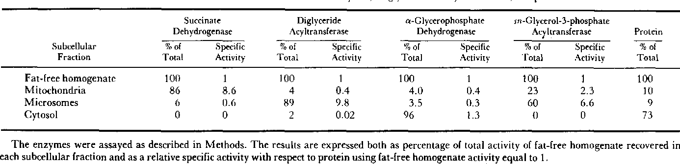 TABLE 1. Intracellular distribution of marker enzymes, sn-glycerol-3-P acyltransferase, and protein