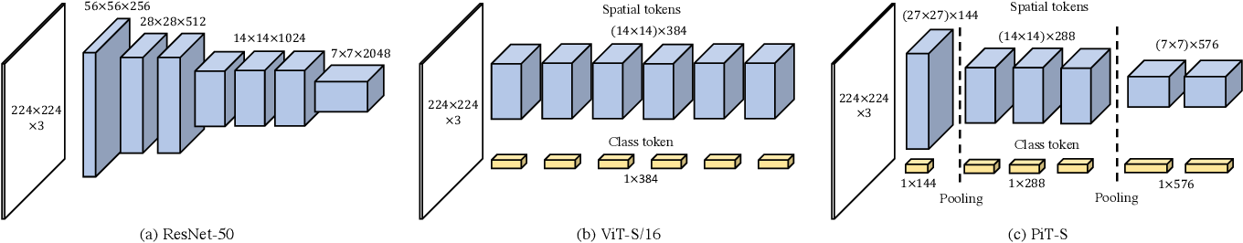 Figure 1 for Rethinking Spatial Dimensions of Vision Transformers