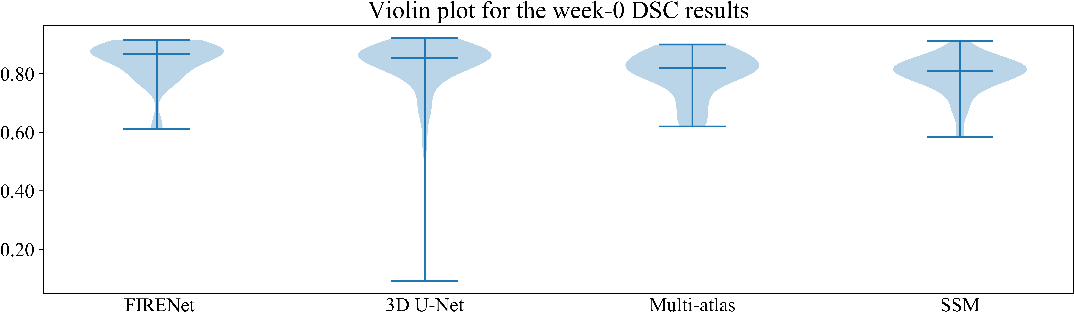 Figure 3 for Fabric Image Representation Encoding Networks for Large-scale 3D Medical Image Analysis
