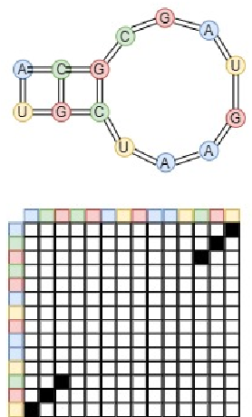Figure 1 for Classification of Noncoding RNA Elements Using Deep Convolutional Neural Networks