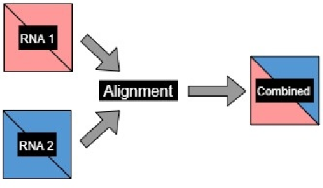 Figure 3 for Classification of Noncoding RNA Elements Using Deep Convolutional Neural Networks