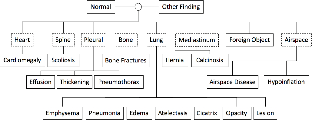 Figure 1 for When Radiology Report Generation Meets Knowledge Graph