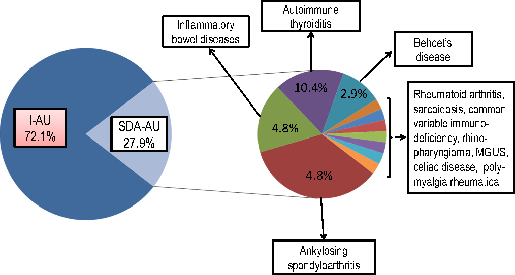 Fig. 1 Schematic representation of the distribution of idiopathic and systemic disease-associated autoimmune uveitis in a cohort of 104 difficult-to-treat patients followed up at a tertiary reference center