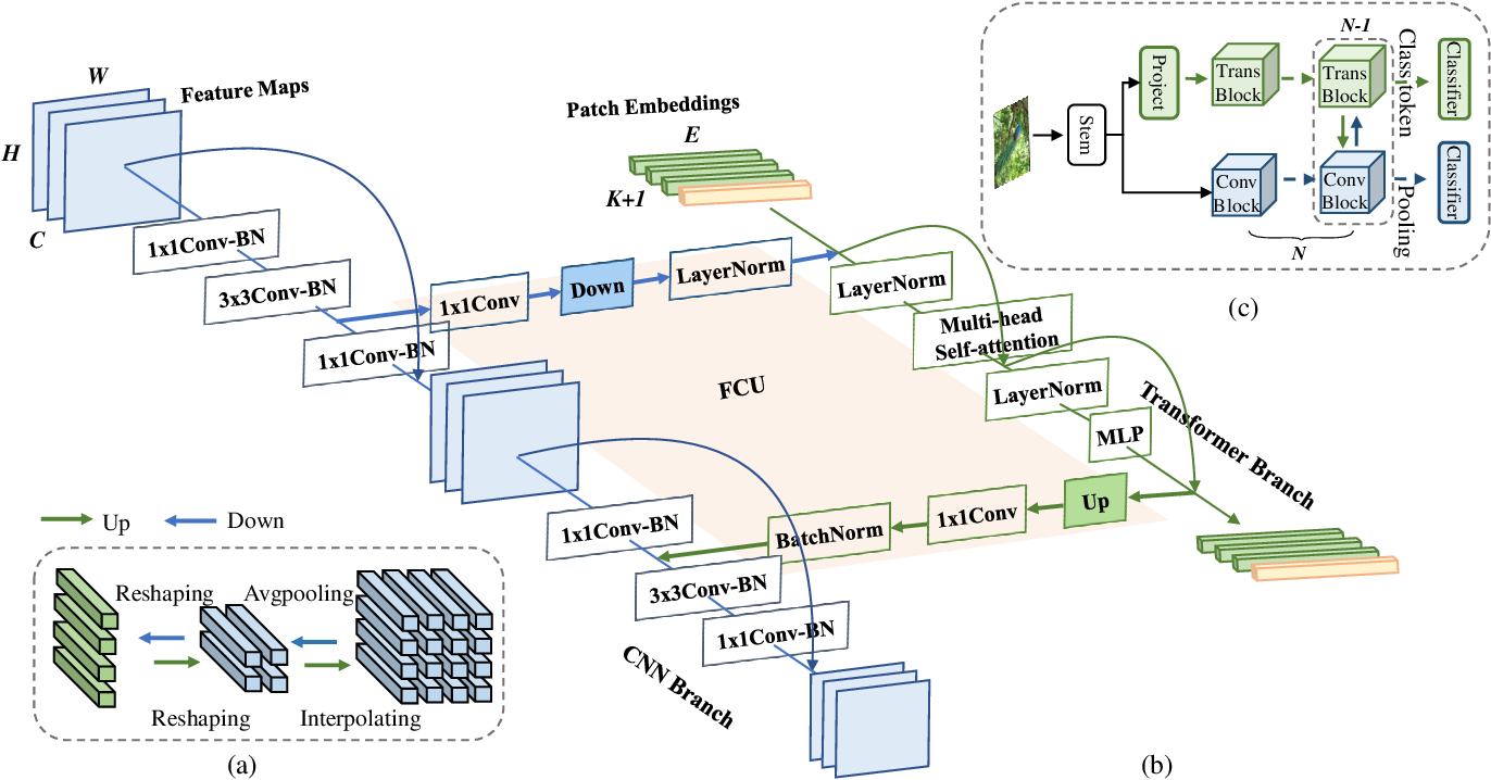 Figure 2 for Conformer: Local Features Coupling Global Representations for Visual Recognition
