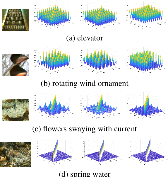 Figure 3 for Similarity-DT: Kernel Similarity Embedding for Dynamic Texture Synthesis