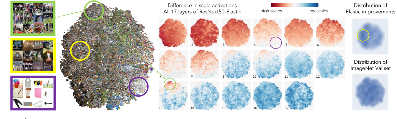 Figure 6: Scale policy analysis. This figure shows the impact of the scale policy on the accuracy of our Elastic model. (left) shows all the ImageNet validation set clustered using tsne by their scale policy pattern in the ResNeXt50+Elastic as discussed in section 4.1.1. (middle) shows the the scale policy score of all the images at 17 blocks of the network. Most of the images use high resolution features at early layers and low resolution features at later layers but some images break this pattern. Images pointed in the green circle use high resolution features in the 13th block. Images pointed in the purple circle use low resolution features in the 4th block. These images usually contain a simpler pattern. (right)-bottom shows the density of images in the tsne space and (right)-top shows the density of the images that got correctly classified by Elastic model but miss-classified by the base ResNeXt model. This shows that Elastic can improve prediction when images are challenging in terms of their scale information. Some samples are pointed by the yellow circle. Best viewed in color.