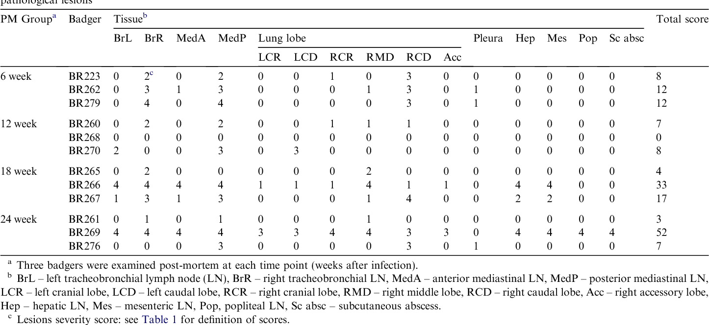 Table 3 Experimental infection of badgers by endobronchial inoculation of 2.5 104 colony forming units of Mycobacterium bovis: distribution of gross pathological lesions