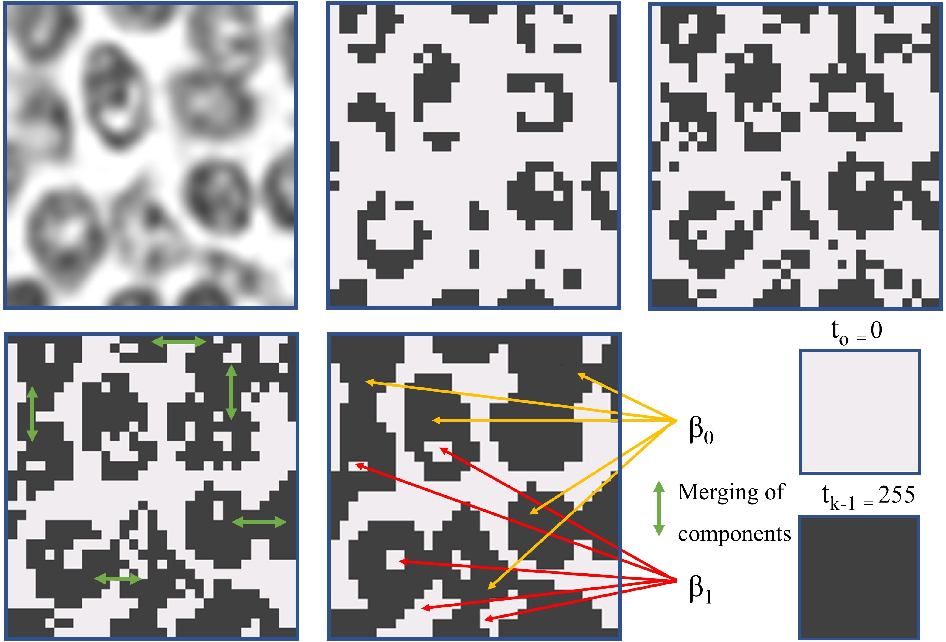 Figure 3 for Fast and Accurate Tumor Segmentation of Histology Images using Persistent Homology and Deep Convolutional Features