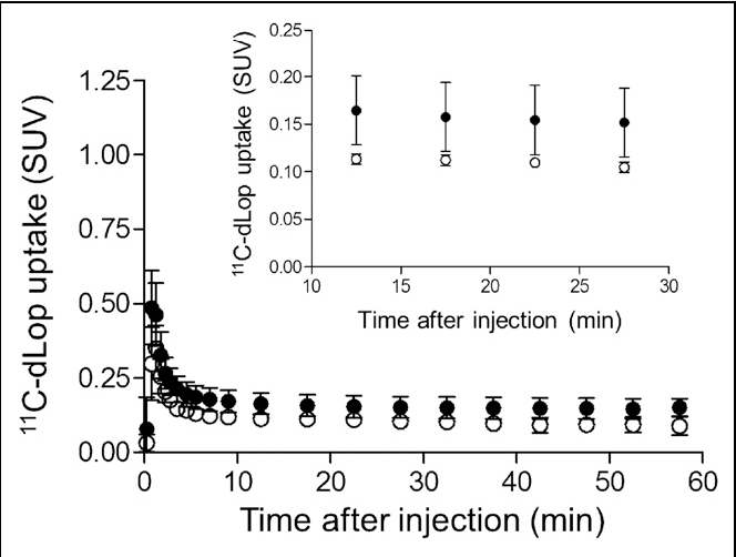 FIGURE 3. Composite neocortex time–activity curves showing brain uptake of radioactivity after 11C-dLop injection at baseline (d) and after 1,500 mg of oral tariquidar (s). Error bars denote SD.