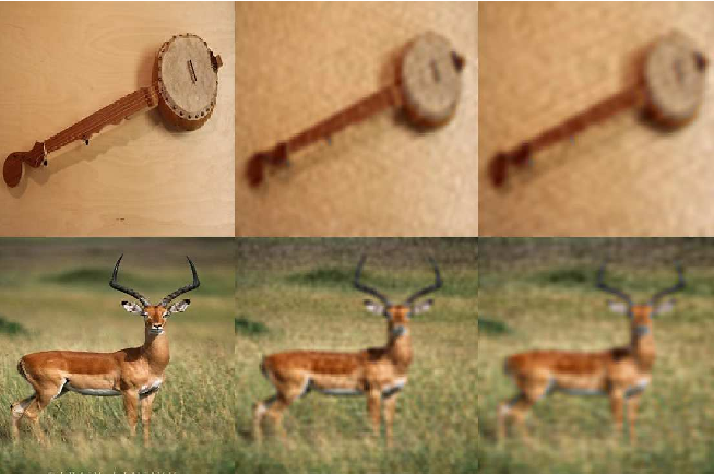 Figure 3 for Distortion Robust Image Classification using Deep Convolutional Neural Network with Discrete Cosine Transform