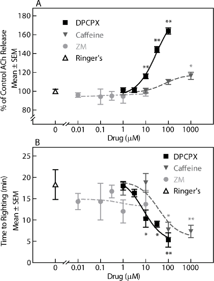 Figure 2.4. Caffeine and DPCPX promote arousal. Caffeine and DPCPX (A) increased prefrontal cortex ACh release and (B) decreased time to waking after anesthesia. Each point in A and B summarizes mean ± standard error of the mean (SEM) from 3 mice. Post-hoc Dunnett's analysis identified concentrations of caffeine and DPCPX that caused a significant (* P < 0.05, ** P < 0.01) change from Ringer's control. Application of regression analyses to compare ACh release (A) and time to righting (B) revealed that ACh release in the prefrontal cortex accounted for 93% of the variance in time to righting after anesthesia for caffeine, 92% for DPCPX, and 0.4% for ZM. Dialysis administration of ZM to the prefrontal cortex did not alter either dependent measure of arousal.