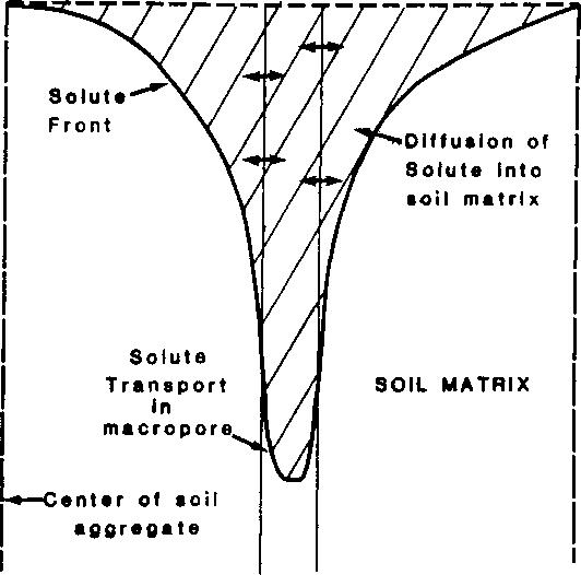 Figure 3. Preferential Flow through riacropore