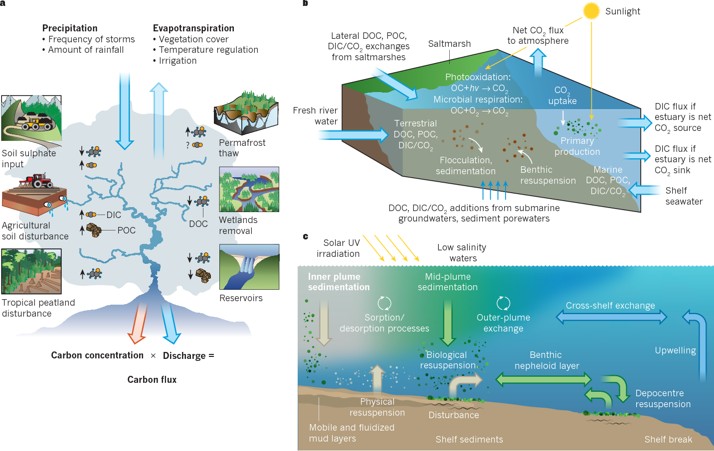 The changing carbon cycle of the coastal ocean semantic scholar figure 1 ccuart Image collections