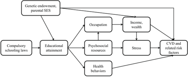 Figure 2 for Machine Learning in Population and Public Health