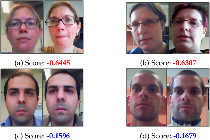 Figure 1 for Fairness in Biometrics: a figure of merit to assess biometric verification systems